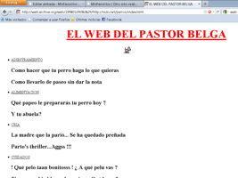 pastor belga